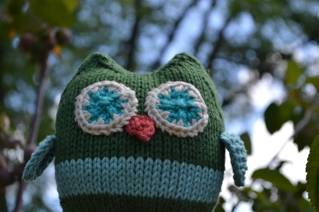 Squish Owl in his native habitat.  (Pattern by Aknitica Designs.)